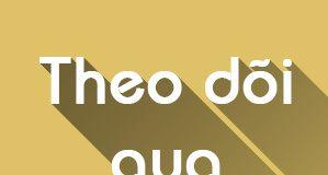 hop-theo-doi-qua-email[1]